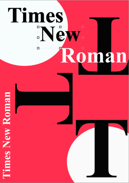 Times New Roman Poster