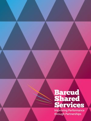 barcud-audit-thumb